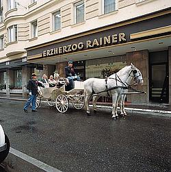 Erzherzog Rainer Hotel / Эрцгерцог Райнер